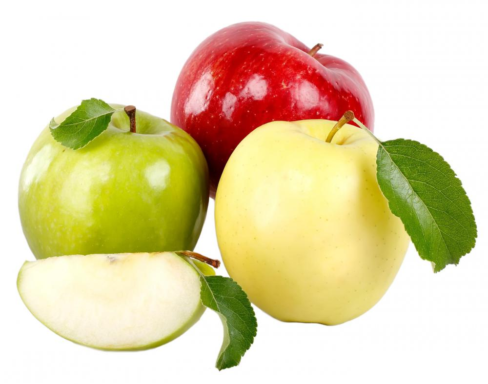 Apples are commonly grown in orchards.