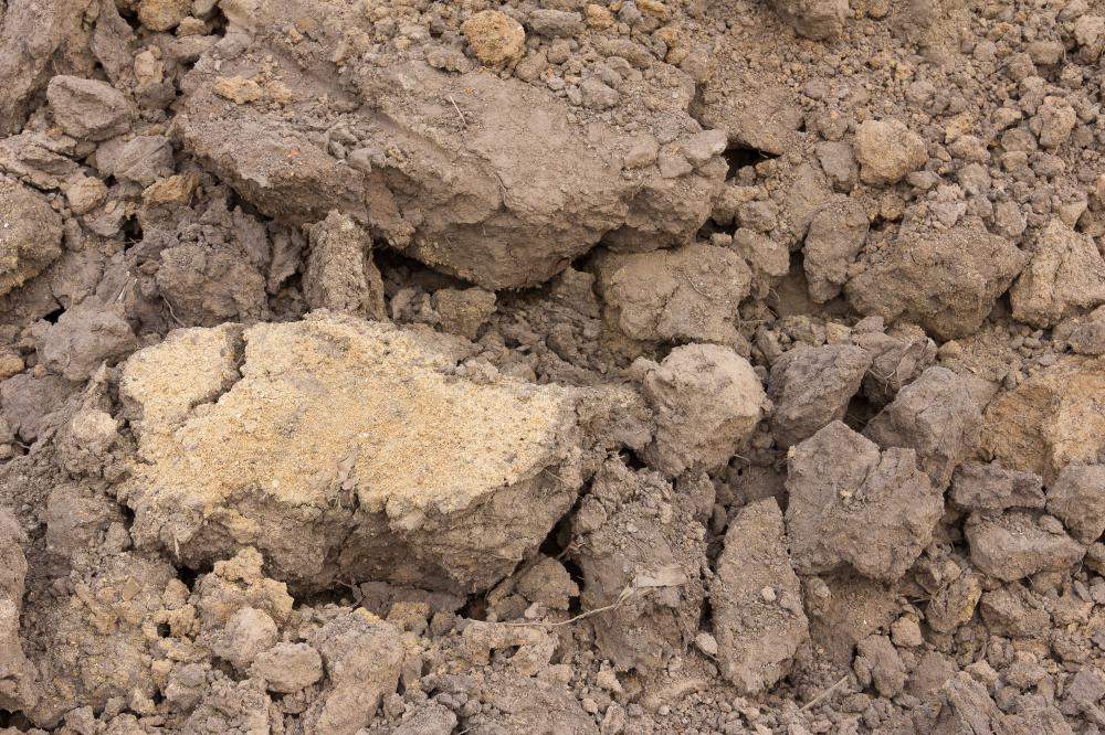 Loamy soil is made up of several different types of soil.